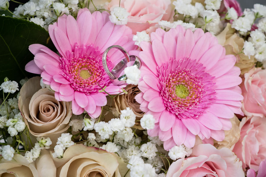 close up detail photo of wedding bands laying on pink flowers in central park