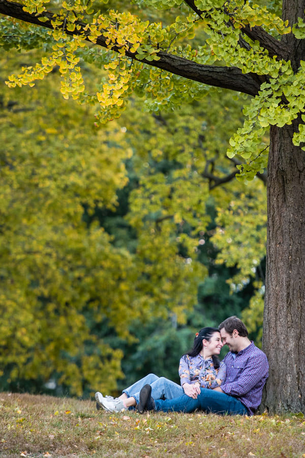 couple sits under tree with fall foliage during engagement session in central park