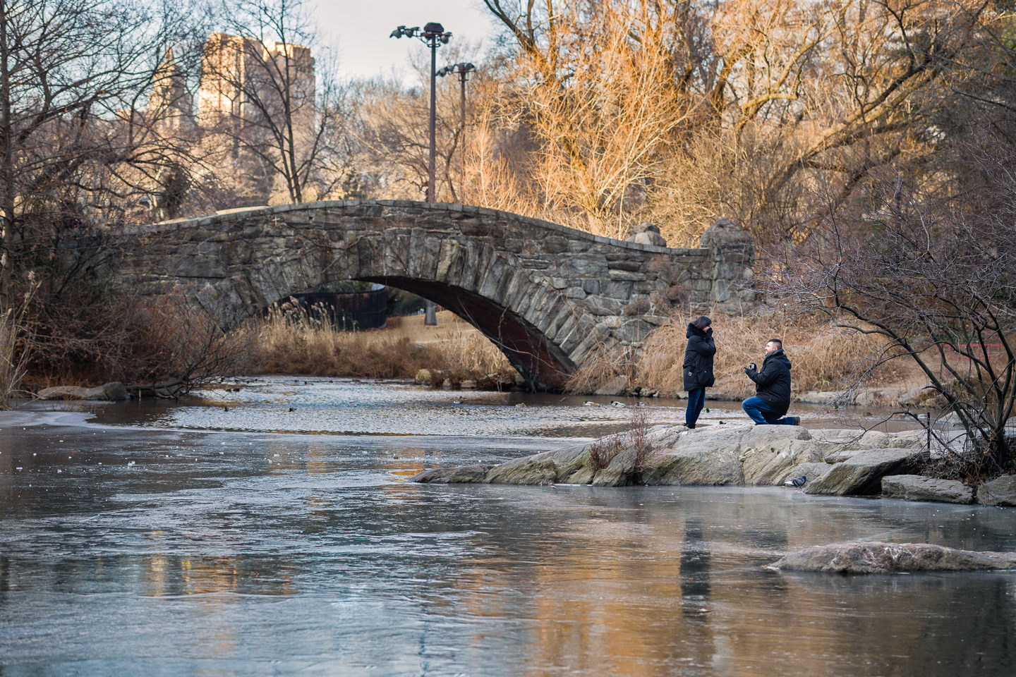 central park proposal at gapstow bridge paparazzi proposals