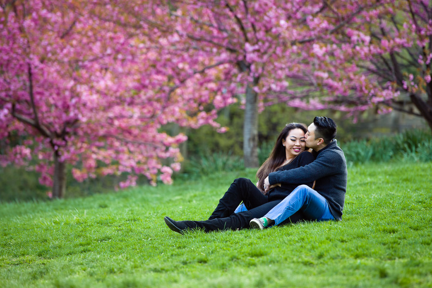couple sits on grass in central park engagement session during spring with pink blossoming trees in the background